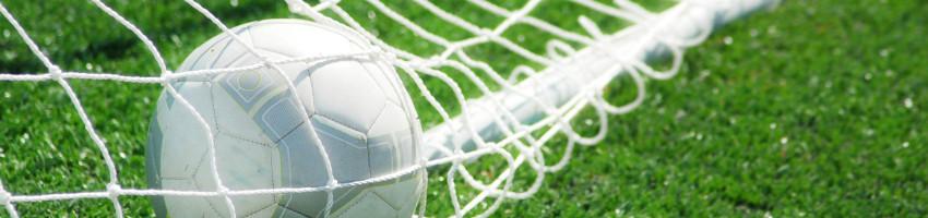 Soccer_ballbackofnet38